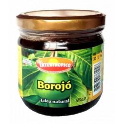 JALEA DE BOROJO INTERTROPICO 500 GR